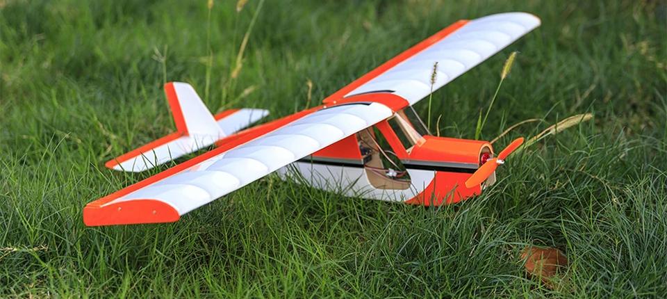Dancing-Wings-Hobby-AeroMax-RC-Airplane