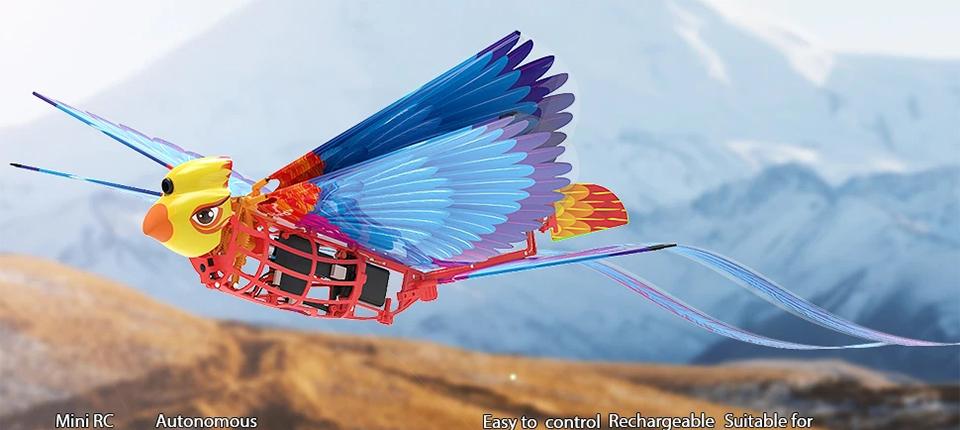 HANVON-Go-Go-Bird-RC-Airplane