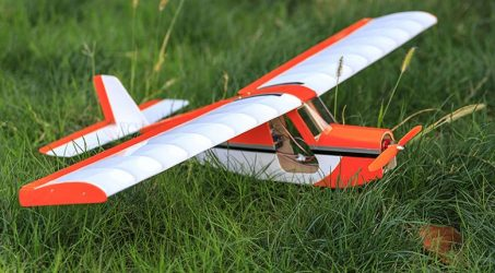 Dancing Wings Hobby AeroMax RC Airplane