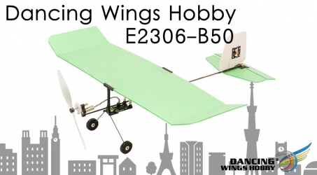 Dancing Wings Hobby Ice Cream E2306-B50 Mini RC Airplane
