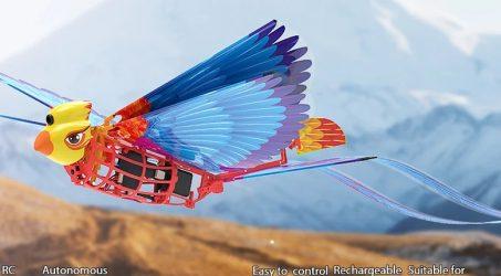 HANVON Go Go Bird RC Airplane