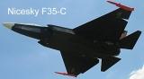 Nicesky F35-C 916mm Wingspan EPS Jet Warbird RC Airplane