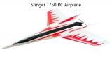 Stinger T750 RC Airplane