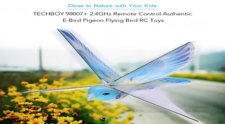 TECHBOY 98007 E-Bird RC Toys